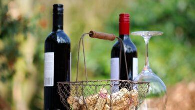 Photo of De beste Franse wijnstreken